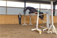 LŠZAA rīkotā zirgu vērtēšana  2010. Brīvajā lēcienā Kohinurs