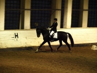 Gundega Krīgere un Mondeo I grupas shēma jaunie zirgi